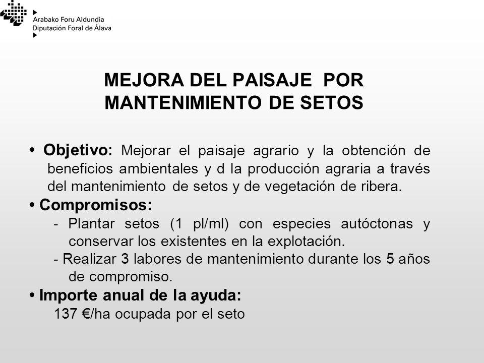 MEJORA DEL PAISAJE POR MANTENIMIENTO DE SETOS