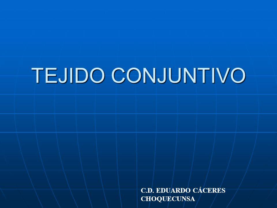 TEJIDO CONJUNTIVO C.D. EDUARDO CÁCERES CHOQUECUNSA