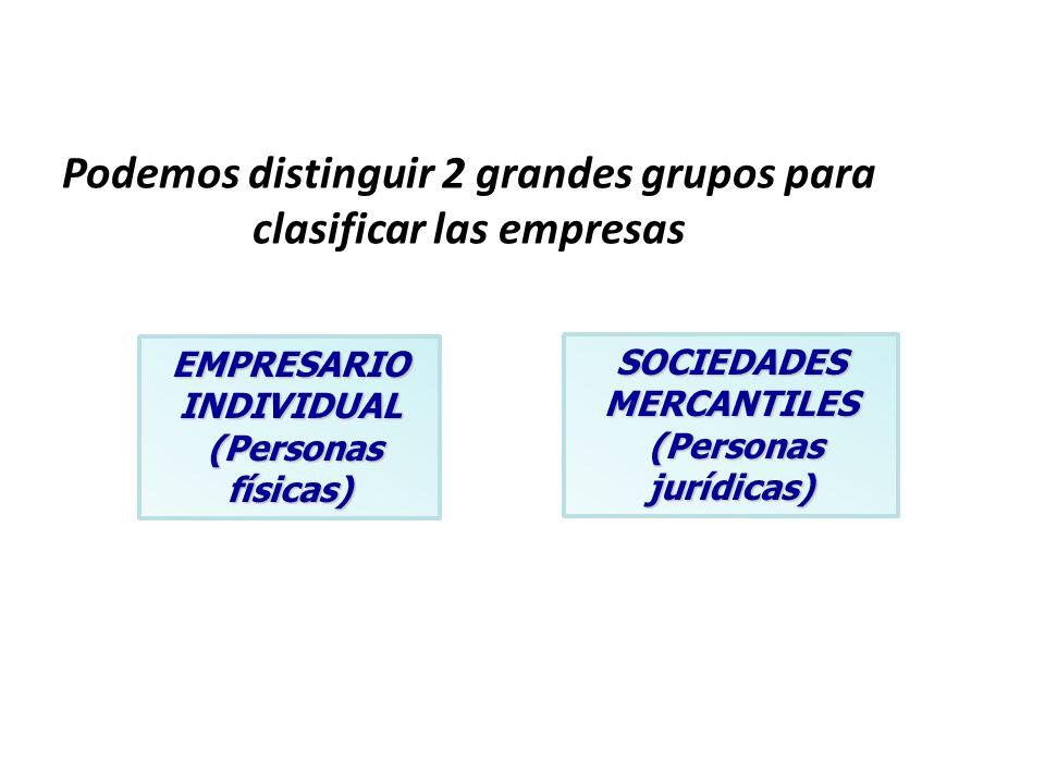 Podemos distinguir 2 grandes grupos para clasificar las empresas