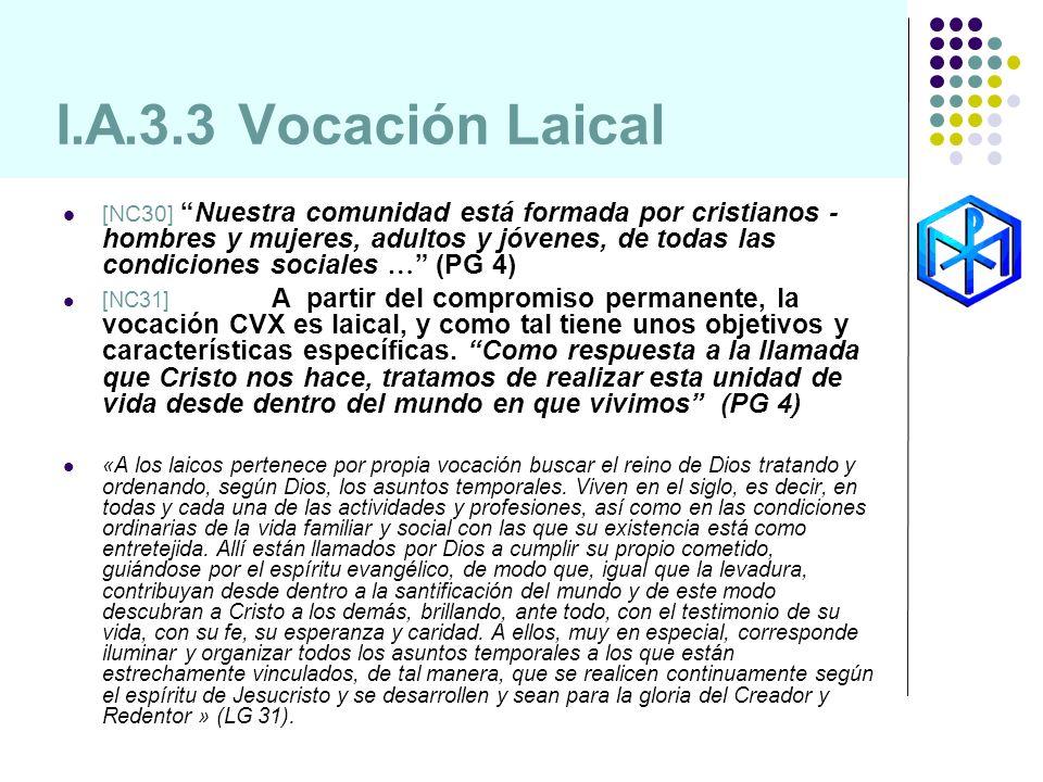 I.A.3.3 Vocación Laical