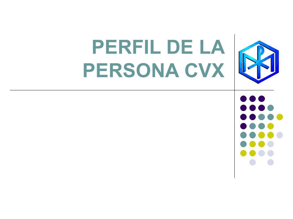 PERFIL DE LA PERSONA CVX