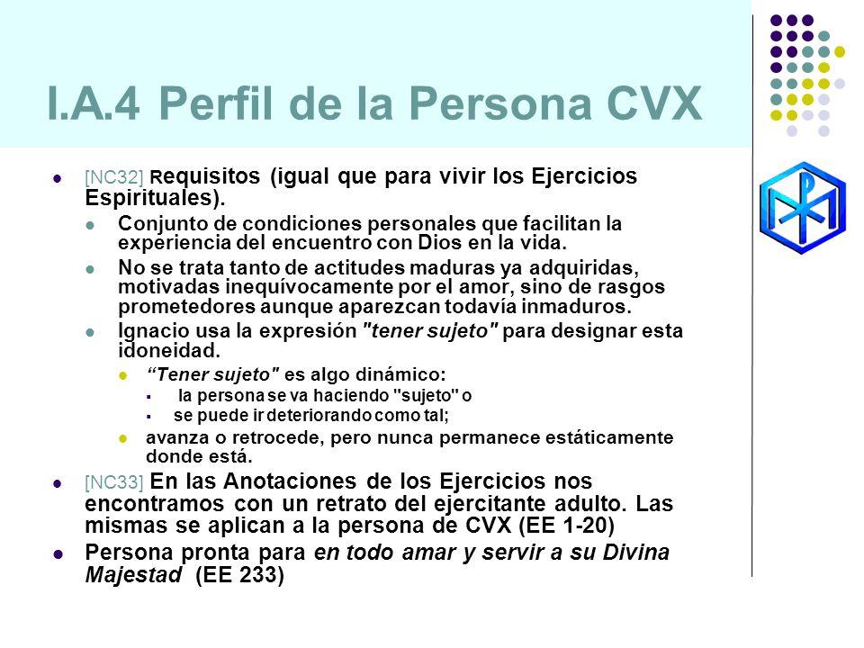 I.A.4 Perfil de la Persona CVX