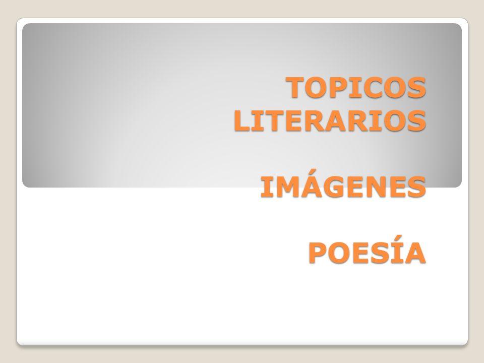 TOPICOS LITERARIOS IMÁGENES POESÍA