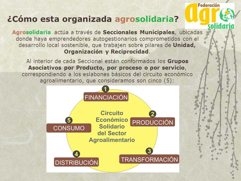 ¿Cómo esta organizada agrosolidaria
