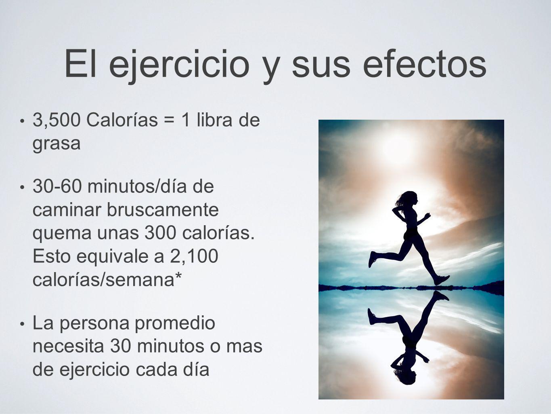 El ejercicio y sus efectos