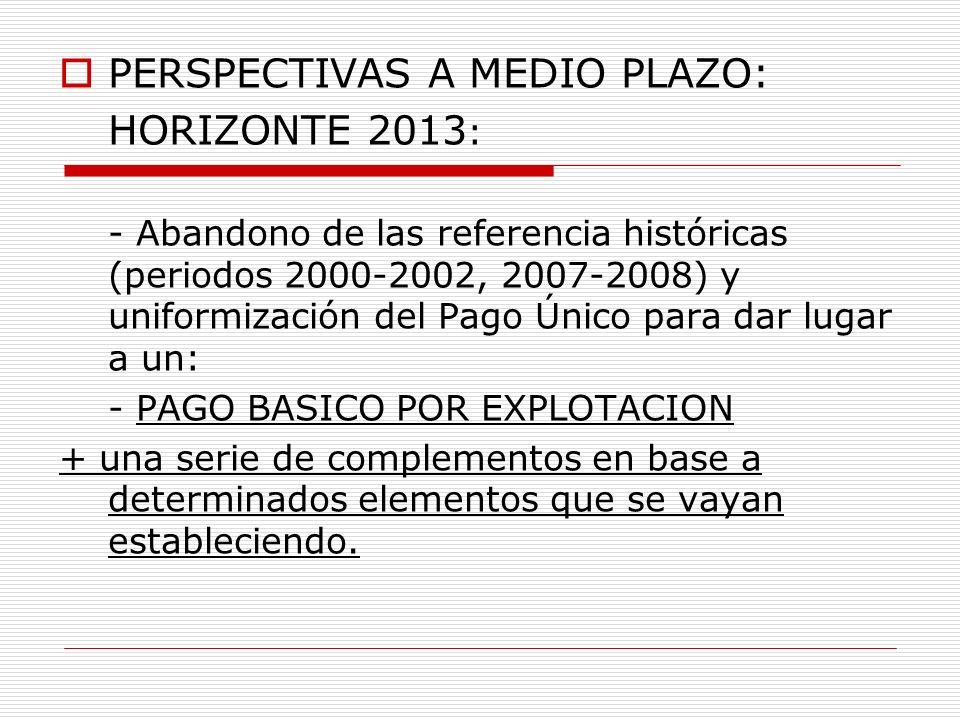 PERSPECTIVAS A MEDIO PLAZO: HORIZONTE 2013: