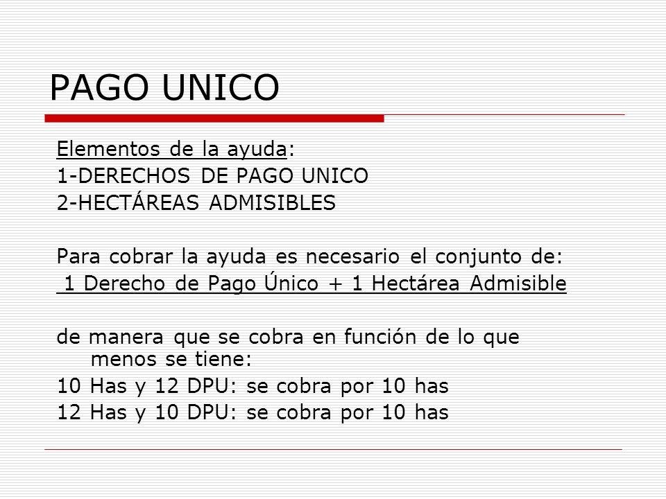 PAGO UNICO Elementos de la ayuda: 1-DERECHOS DE PAGO UNICO