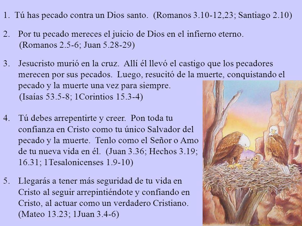 1. Tú has pecado contra un Dios santo. (Romanos 3.10-12,23; Santiago 2.10)