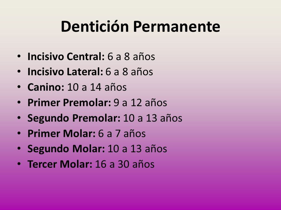 Dentición Permanente Incisivo Central: 6 a 8 años