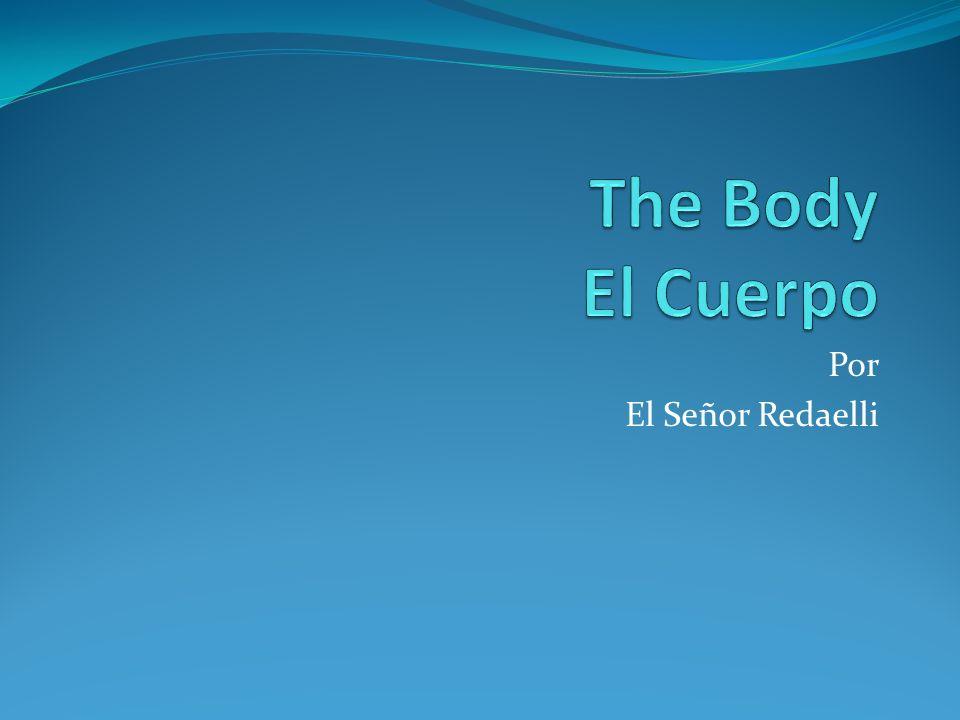 The Body El Cuerpo Por El Señor Redaelli