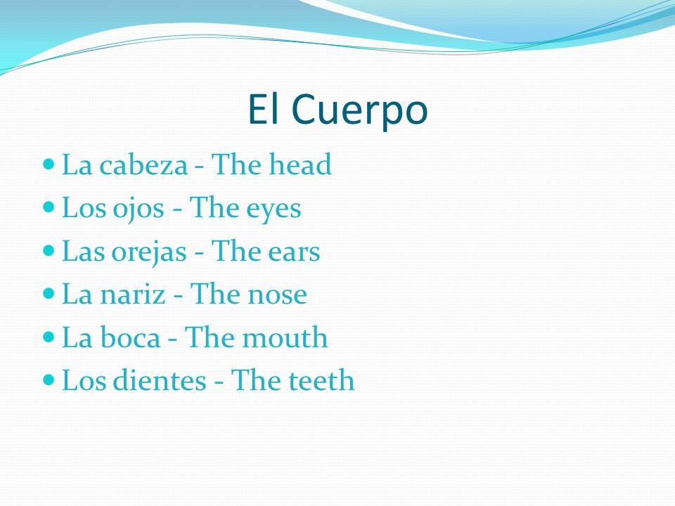El Cuerpo La cabeza - The head Los ojos - The eyes