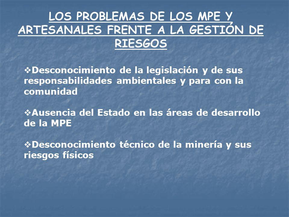 LOS PROBLEMAS DE LOS MPE Y ARTESANALES FRENTE A LA GESTIÓN DE RIESGOS