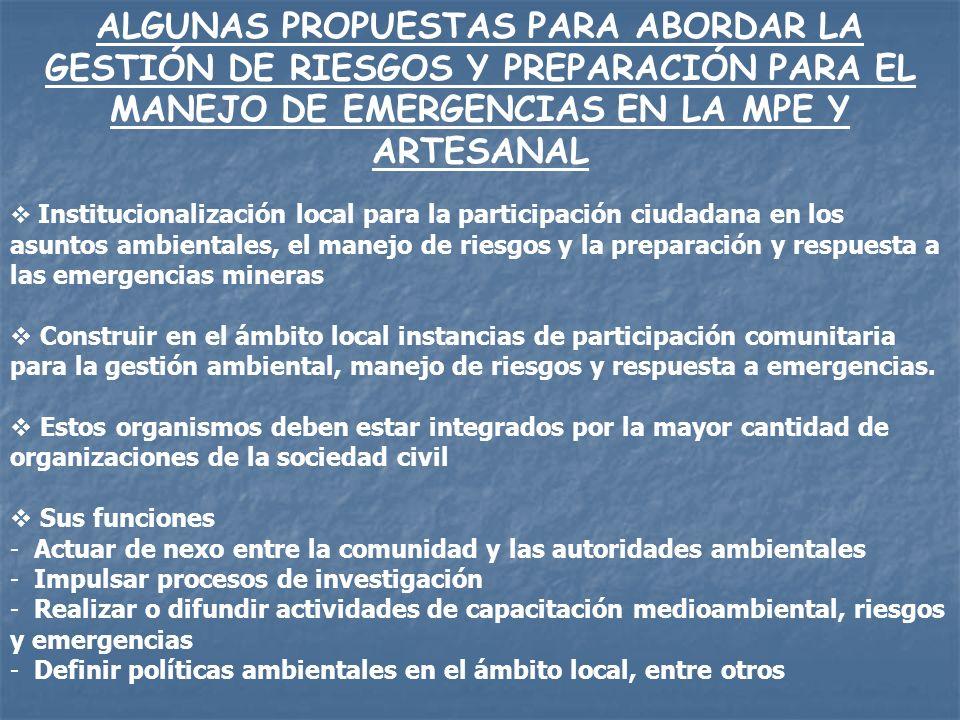ALGUNAS PROPUESTAS PARA ABORDAR LA GESTIÓN DE RIESGOS Y PREPARACIÓN PARA EL MANEJO DE EMERGENCIAS EN LA MPE Y ARTESANAL