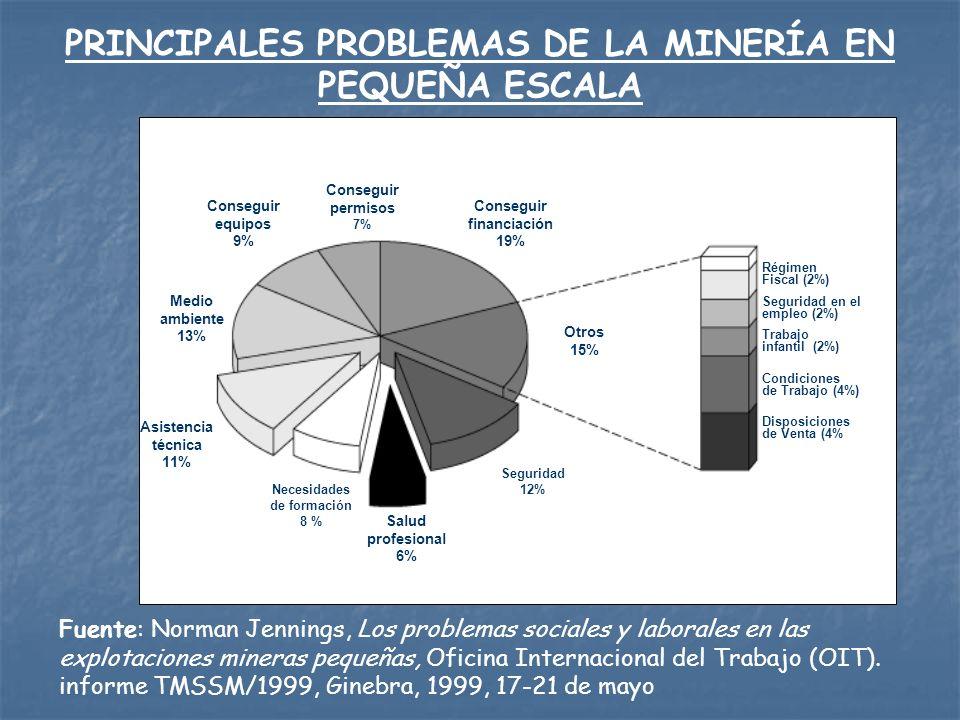 PRINCIPALES PROBLEMAS DE LA MINERÍA EN PEQUEÑA ESCALA
