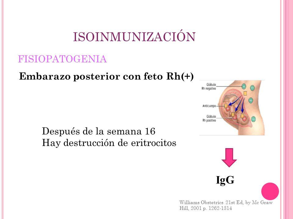 ISOINMUNIZACIÓN IgG FISIOPATOGENIA Embarazo posterior con feto Rh(+)