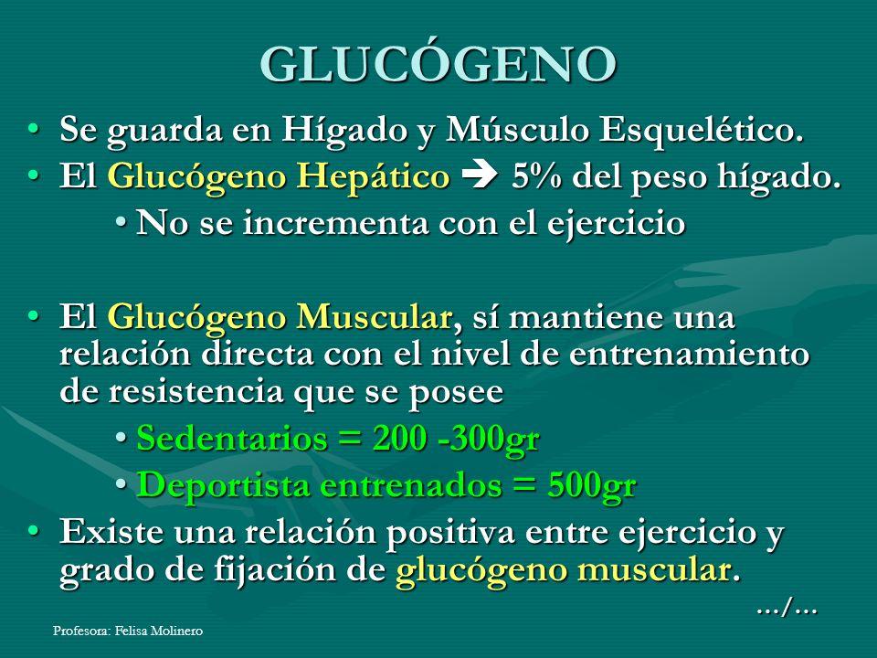 GLUCÓGENO Se guarda en Hígado y Músculo Esquelético.