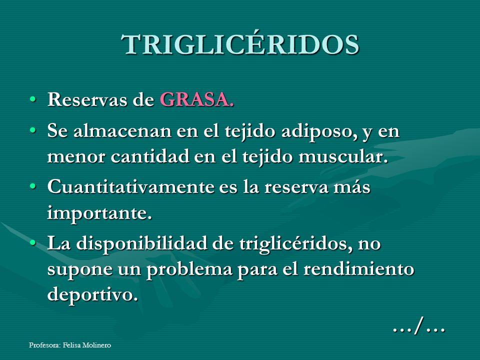TRIGLICÉRIDOS Reservas de GRASA.