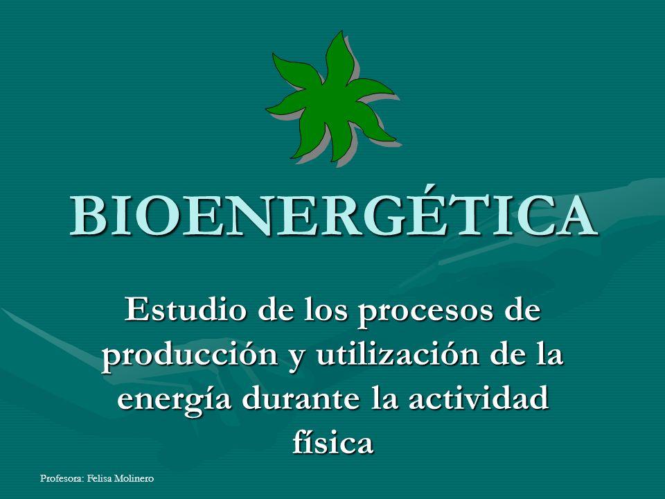 BIOENERGÉTICA Estudio de los procesos de producción y utilización de la energía durante la actividad física.