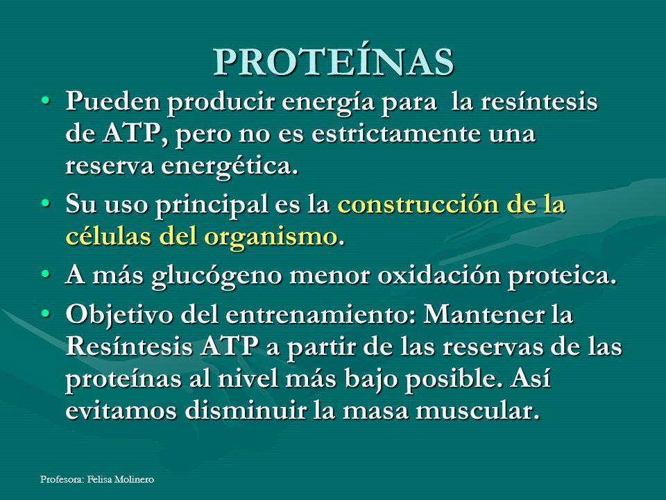 PROTEÍNAS Pueden producir energía para la resíntesis de ATP, pero no es estrictamente una reserva energética.