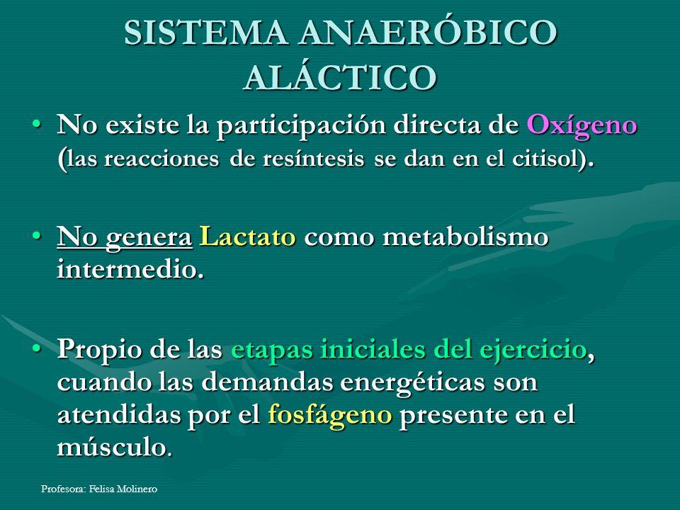 SISTEMA ANAERÓBICO ALÁCTICO
