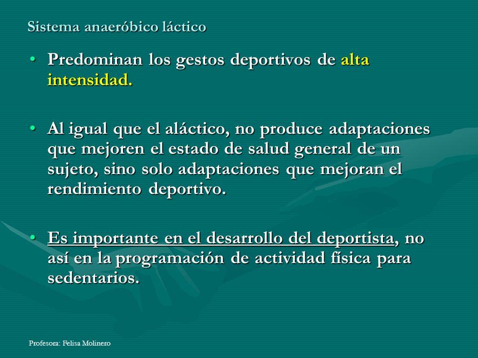 Sistema anaeróbico láctico