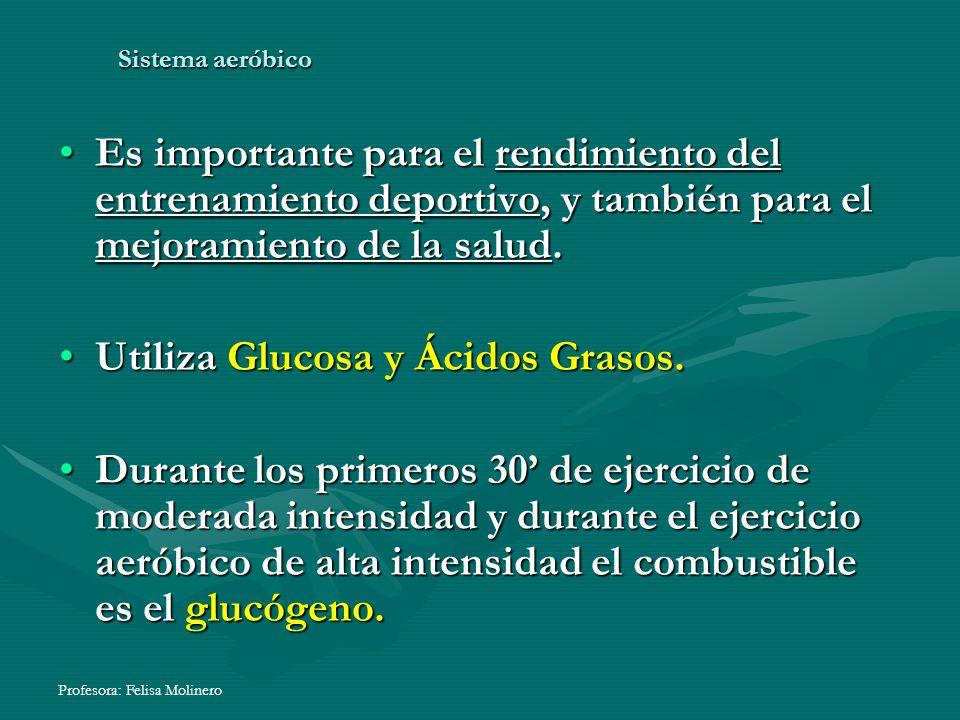 Utiliza Glucosa y Ácidos Grasos.