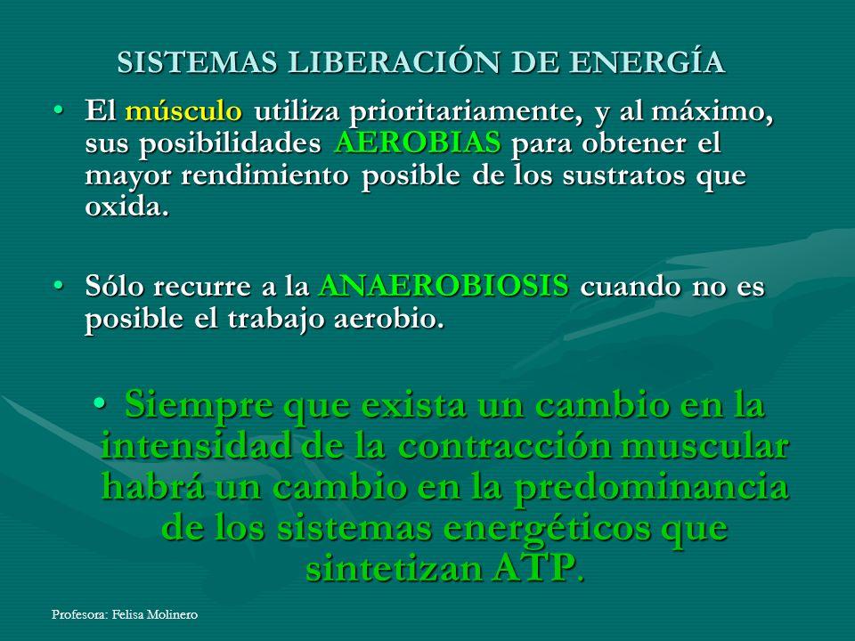 SISTEMAS LIBERACIÓN DE ENERGÍA