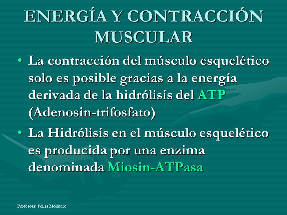 ENERGÍA Y CONTRACCIÓN MUSCULAR