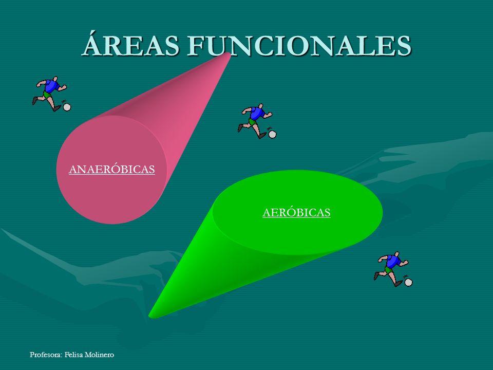 ÁREAS FUNCIONALES ANAERÓBICAS AERÓBICAS Profesora: Felisa Molinero