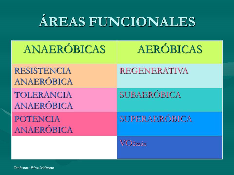 ÁREAS FUNCIONALES ANAERÓBICAS AERÓBICAS RESISTENCIA ANAERÓBICA