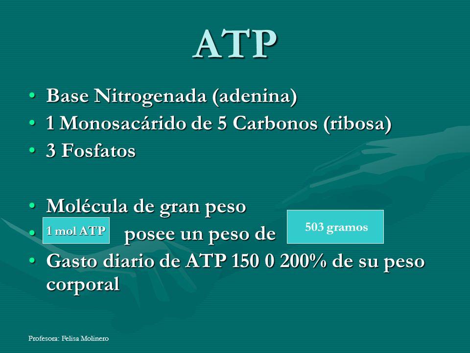 ATP Base Nitrogenada (adenina) 1 Monosacárido de 5 Carbonos (ribosa)