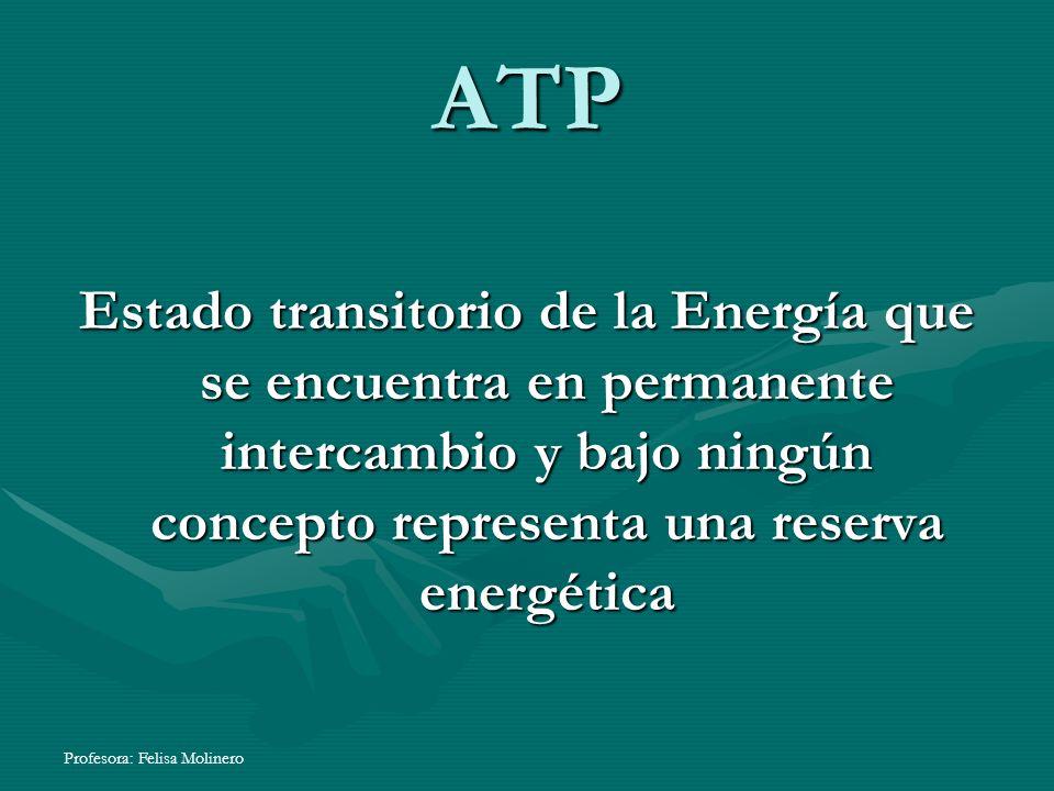 ATP Estado transitorio de la Energía que se encuentra en permanente intercambio y bajo ningún concepto representa una reserva energética.