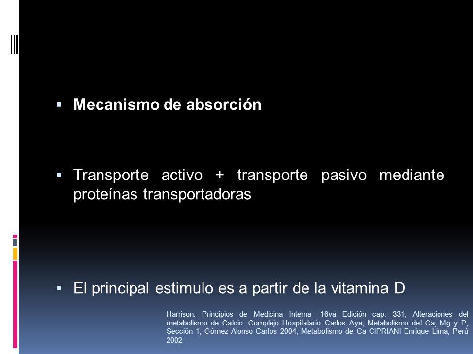 Mecanismo de absorción