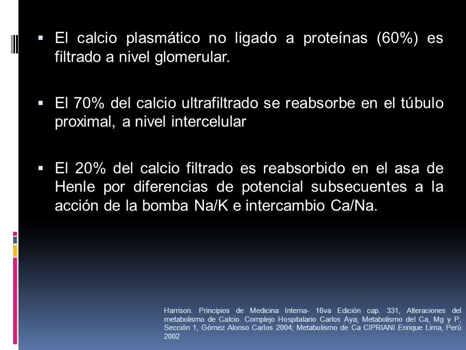 El calcio plasmático no ligado a proteínas (60%) es filtrado a nivel glomerular.