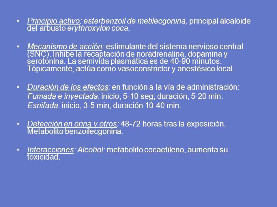 Principio activo: esterbenzoil de metilecgonina, principal alcaloide del arbusto erythroxylon coca.