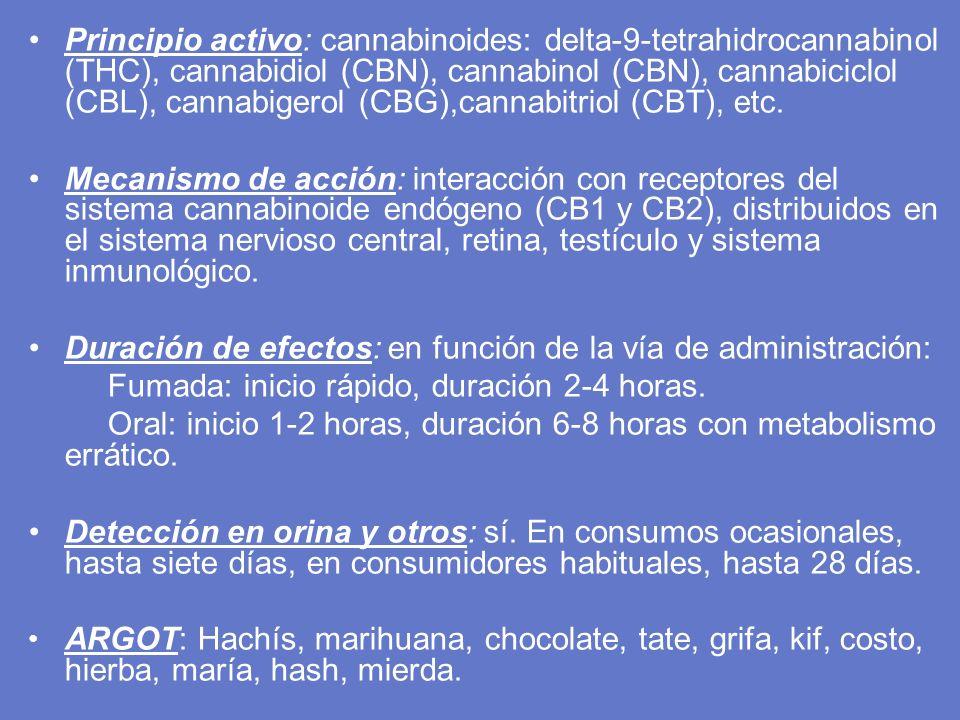 Principio activo: cannabinoides: delta-9-tetrahidrocannabinol (THC), cannabidiol (CBN), cannabinol (CBN), cannabiciclol (CBL), cannabigerol (CBG),cannabitriol (CBT), etc.