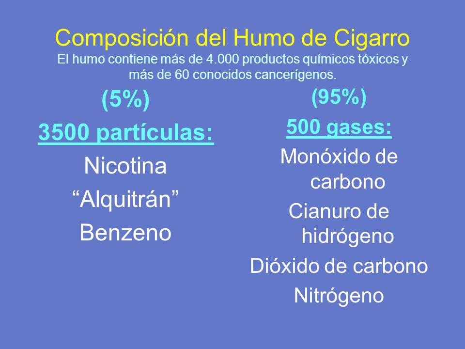 Composición del Humo de Cigarro El humo contiene más de 4