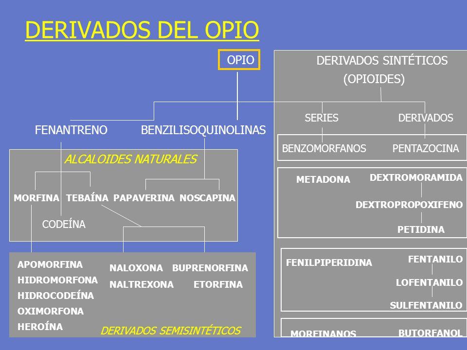 DERIVADOS DEL OPIO OPIO FENANTRENO BENZILISOQUINOLINAS