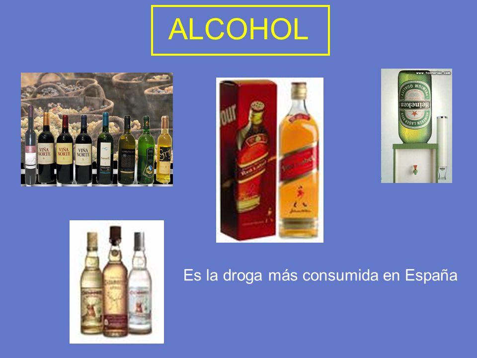 ALCOHOL Es la droga más consumida en España