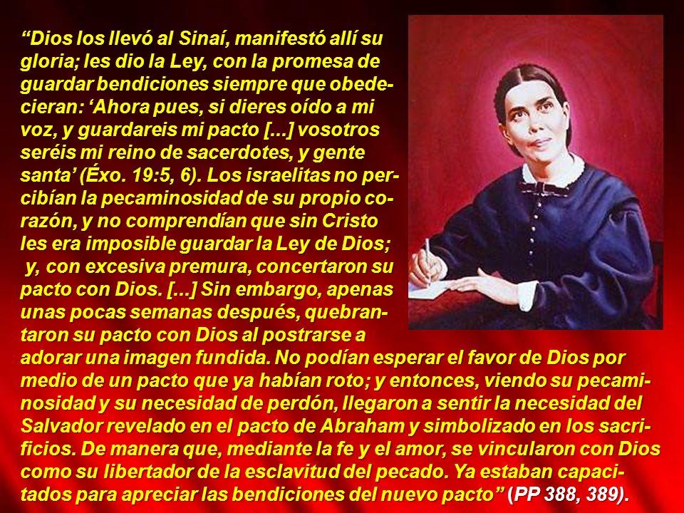 Dios los llevó al Sinaí, manifestó allí su
