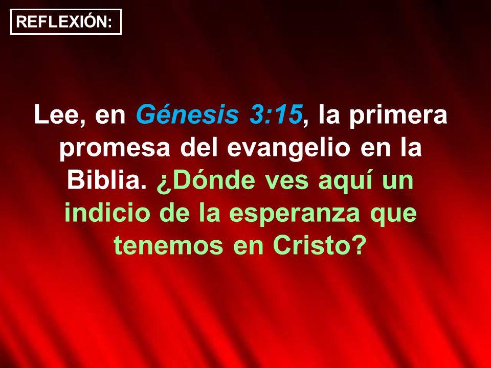 REFLEXIÓN: Lee, en Génesis 3:15, la primera promesa del evangelio en la Biblia.