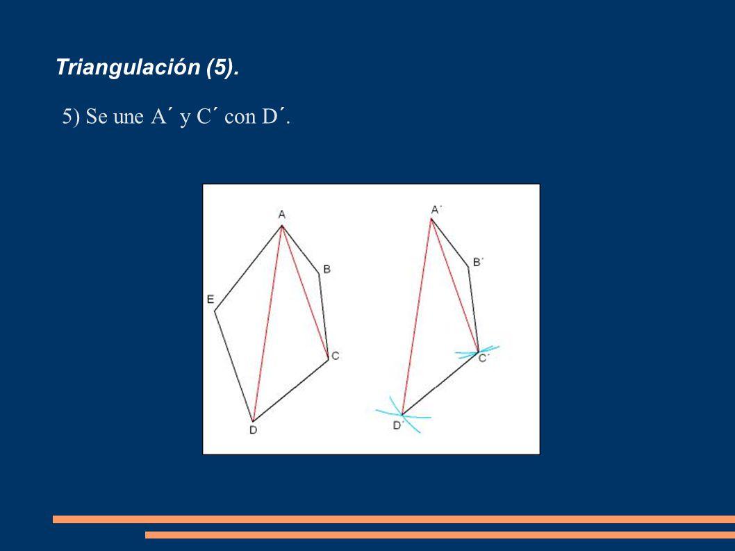 Triangulación (5). Se une A´ y C´ con D´.