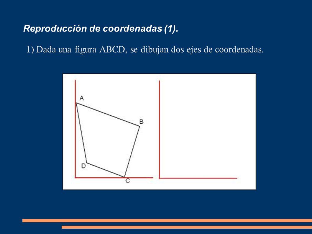Reproducción de coordenadas (1).