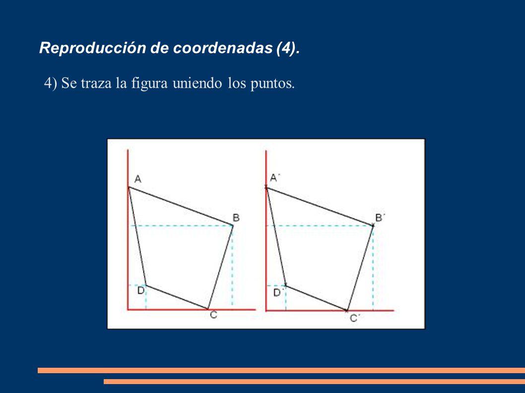 Reproducción de coordenadas (4).