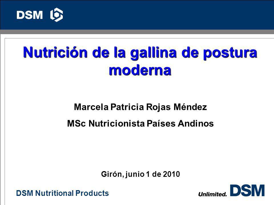 Nutrición de la gallina de postura moderna