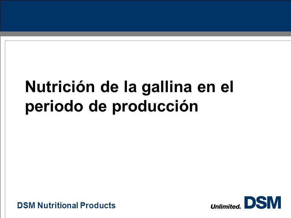 Nutrición de la gallina en el periodo de producción