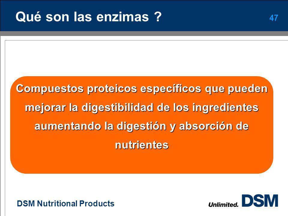 Qué son las enzimas Compuestos proteicos específicos que pueden