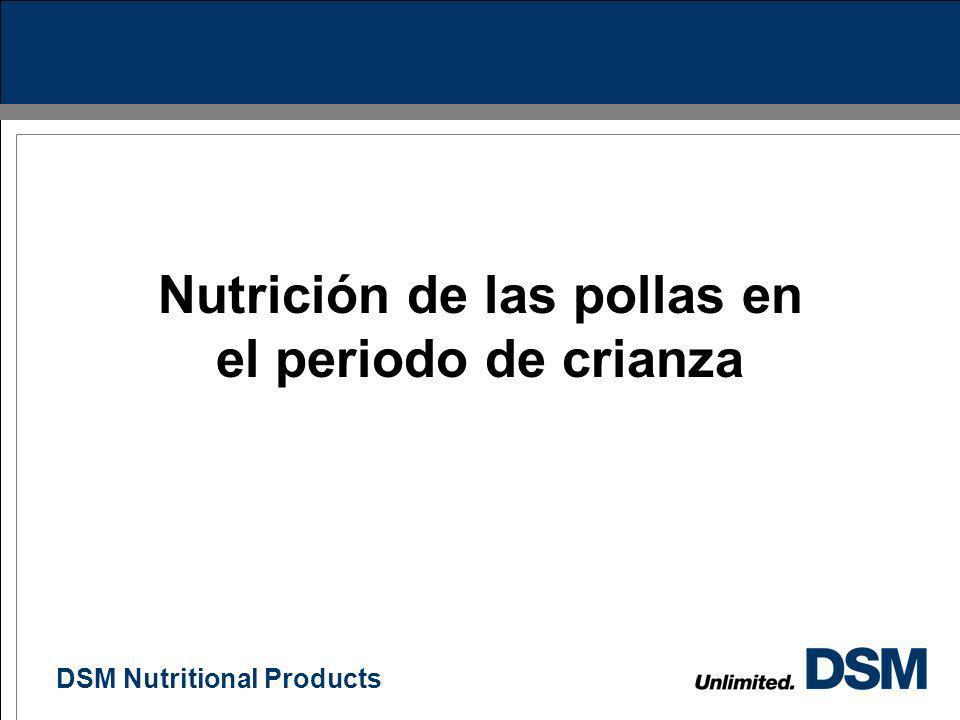 Nutrición de las pollas en el periodo de crianza
