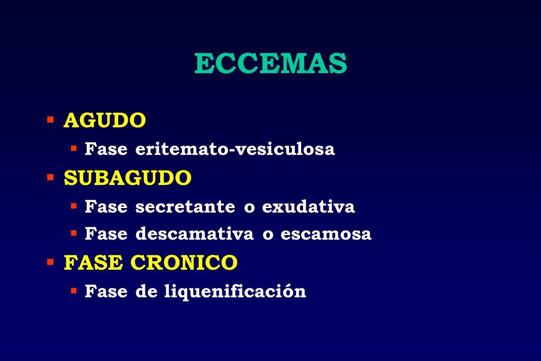 ECCEMAS AGUDO SUBAGUDO FASE CRONICO Fase eritemato-vesiculosa