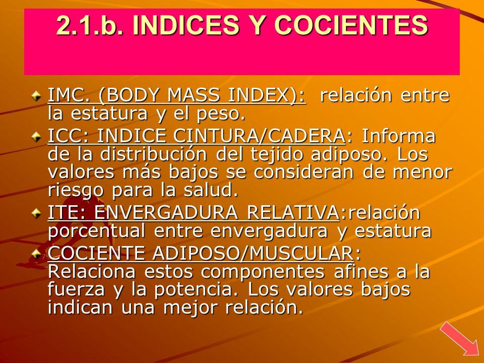 2.1.b. INDICES Y COCIENTES IMC. (BODY MASS INDEX): relación entre la estatura y el peso.
